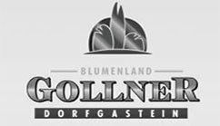 BLUMENLAND GOLLNER GMBH